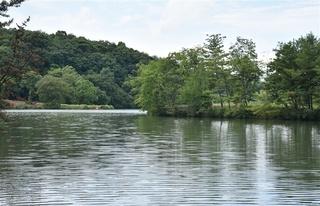 右側が「広島の丘」、奥左が「長崎の丘」として被爆樹木を植樹する大池公園