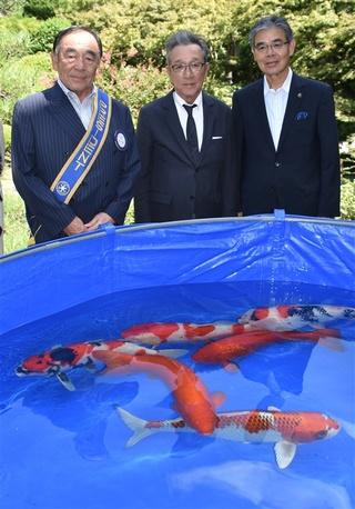 久留米北ロータリークラブが萃香園ホテルに贈ったニシキゴイ