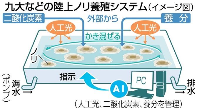 九大などの陸上ノリ養殖システム(イメージ図)