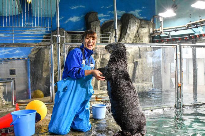 員 給料 飼育 動物園