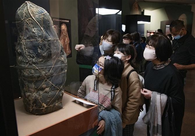 展 富山 ミイラ ライデン国立古代博物館所蔵 古代エジプト展 公式サイト